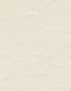 Zander Ivory 3101