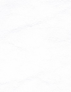 Zander Pure White 3102