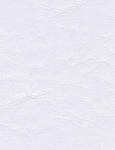 Zander Off White 3104