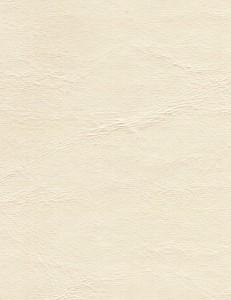 Zander White Cap 3105
