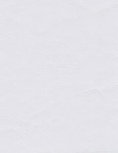 Zander Arctic Sky 3110