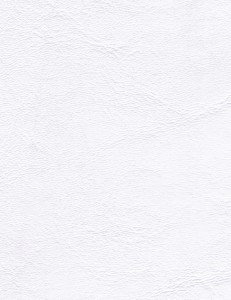 Zander Briliant White 3103